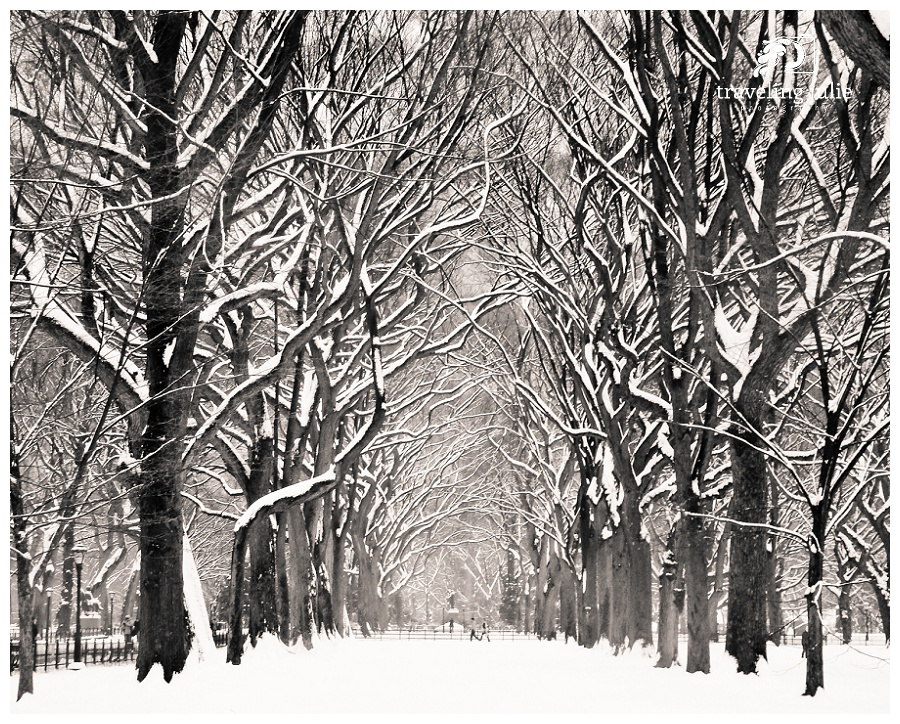 Traveling-Julie-Photography-Places-Central-Park-01