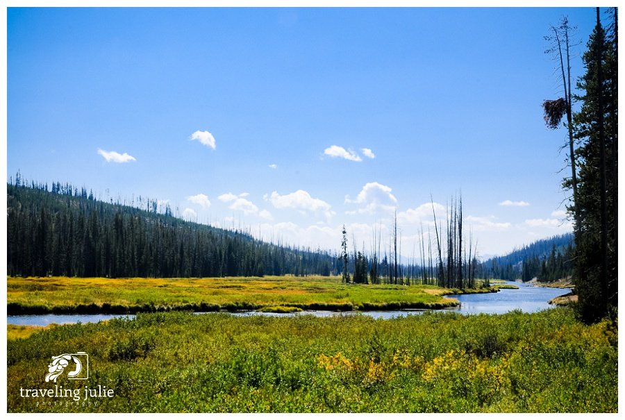 Traveling-Julie-Photography-Places-Yellowstone